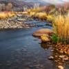 Life Along the Rivers Edge