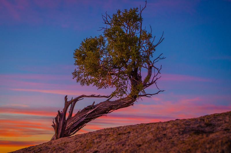 Thanksgiving Sunrise<br /> (Southern Utah)