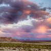 Pink Clouds of the Desert