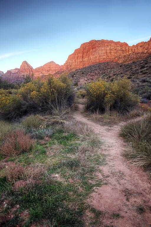 Springdale Dog Park, Zion National Park, Utah