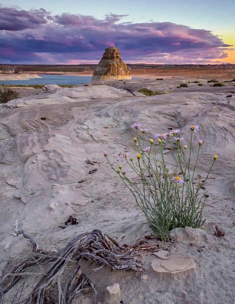 Lone Rock Sunset