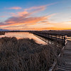 Farmington Bird Refuge Sunset