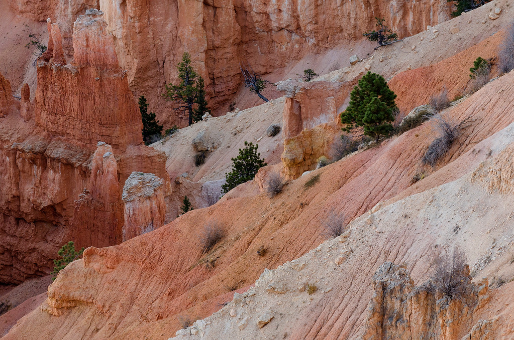 Bryce Canyon Foothold