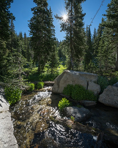 Stream Entering Red Pine Lake