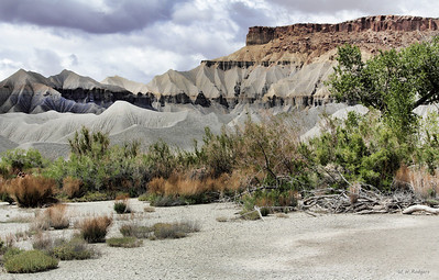 Mancos  Badlands