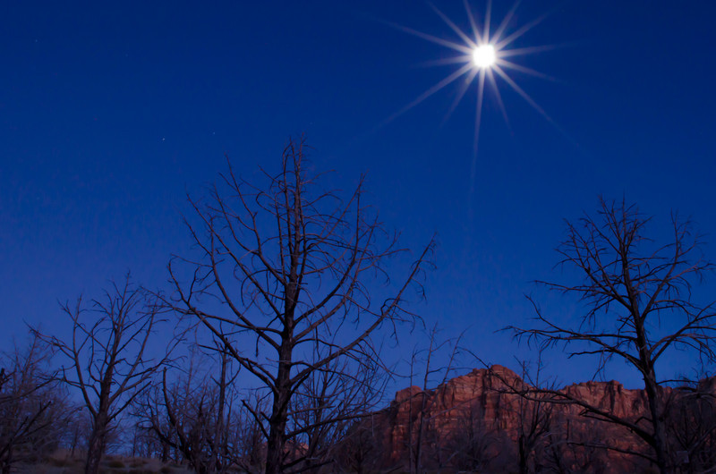 Moonrise Over Zion