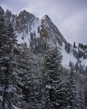 Neff's Canyon in Winter