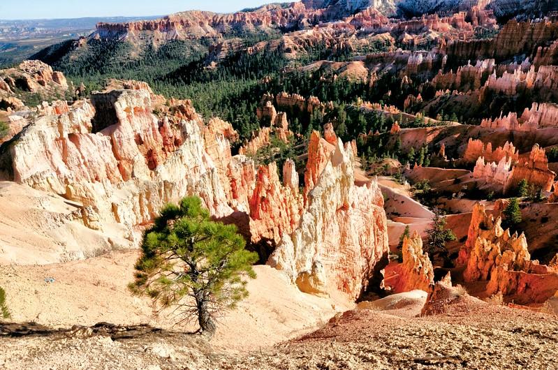 Bryce Canyon Overlook #2