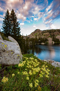 Sunrise at Lake Mary in Wasatch Range of the Rocky Mountains in Utah. The popular hiking high alpine destination is located amongst the Brighton Ski Resort slopes. During the summer, the meadows around the lake are full of color as wildflowers add to scenic beauty of the mountain landscape.   Photo by Kyle Spradley | © Kyle Spradley Photography | www.kspradleyphoto.com