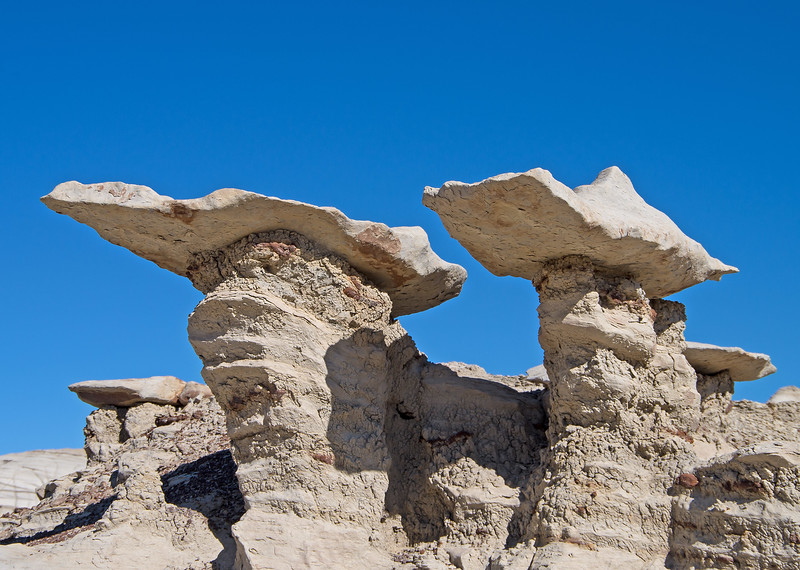 Winglike structures are another common feature at Bisti.