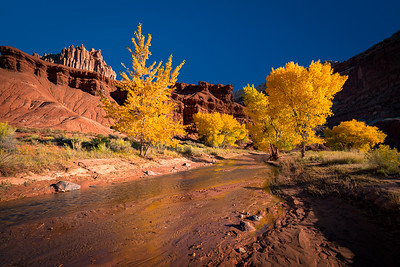Southern Utah Fall Colors