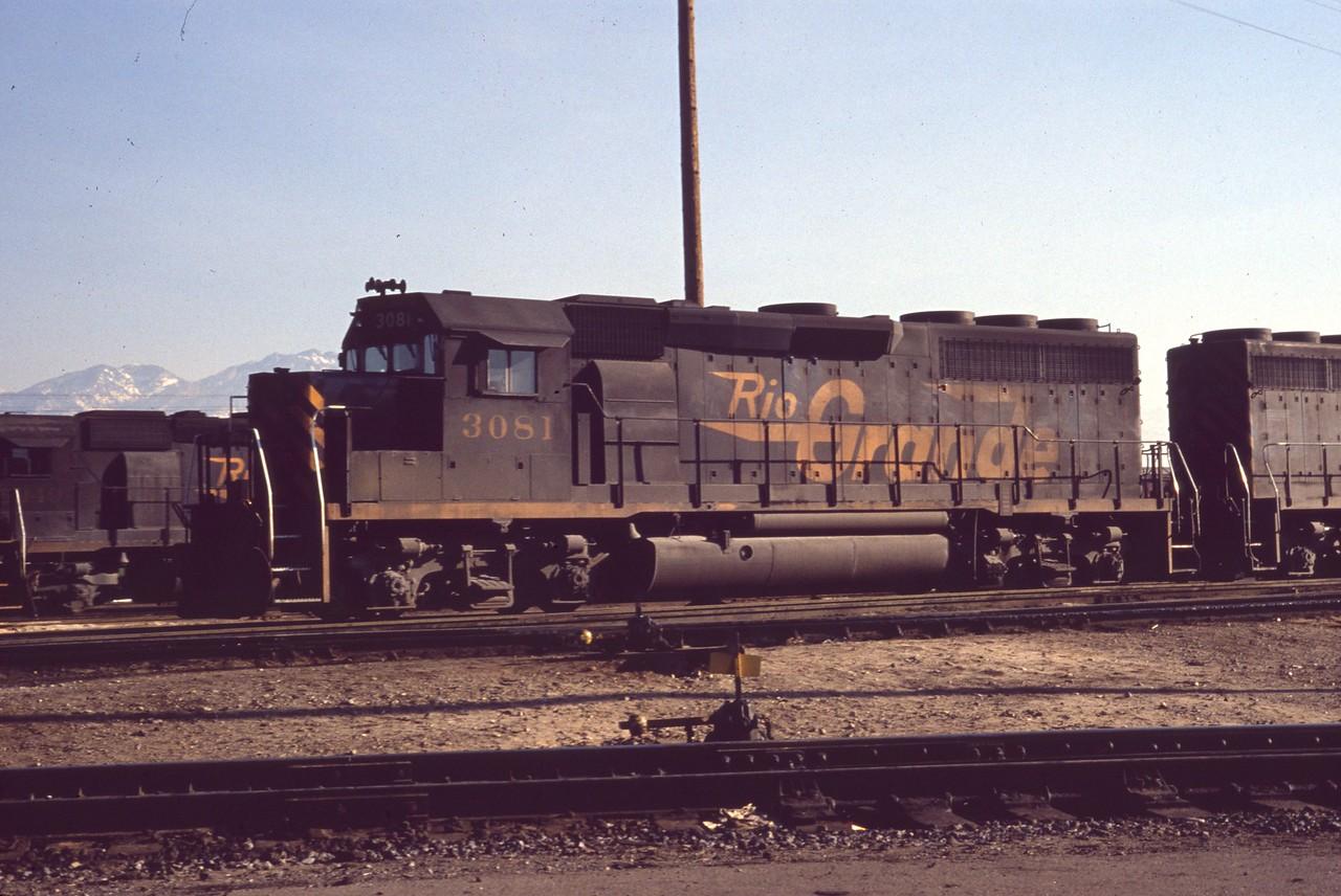 GP40 3081 at Roper. (Dave England Photo)