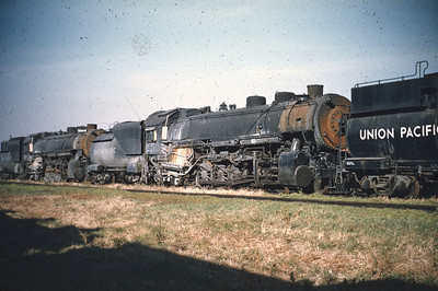 Union Pacific Steam - donstrack