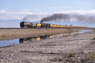 UP_4-8-4_9844-with-train_Burmester_Apr-26-1991_Dean-Gray-photo