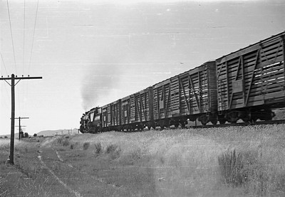 UP_2-10-2_5509-with-train_near-Bancroft_Aug-22-1953_002_Emil-Albrecht-photo-0305