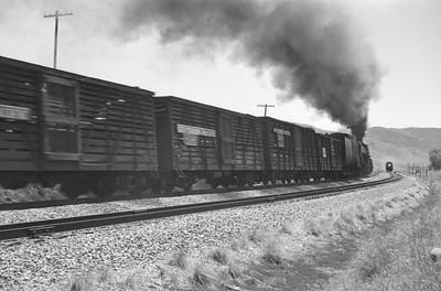 UP_4-8-8-4_4017-with-train_near-Echo_Jun-21-1953_002_Emil-Albrecht-photo-0304-rescan