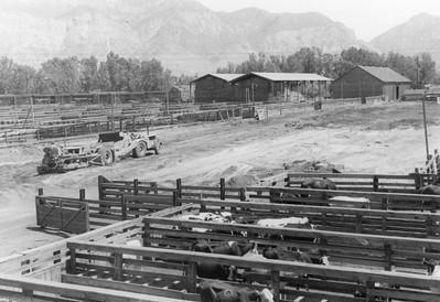 Ogden-Union-Stockyards_0018