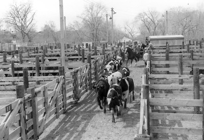 Ogden-Union-Stockyards_0002