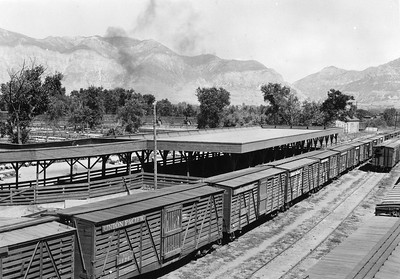 Ogden-Union-Stockyards_sheep-div-loading-chutes_knowles_OgdenRails1-63A