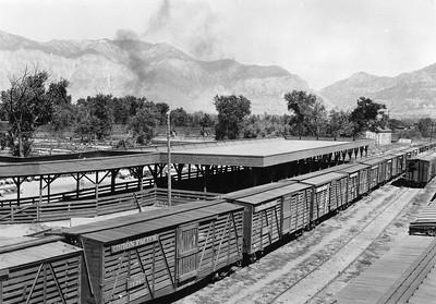 Ogden-Union-Stockyards_sheep-div-loading-chutes_knowles_OgdenRails1-63A