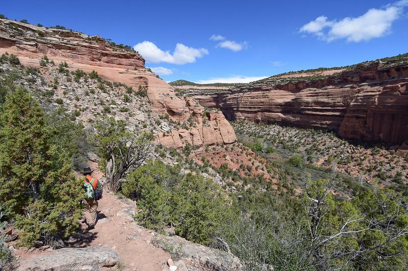 Descending into Ute Canyon