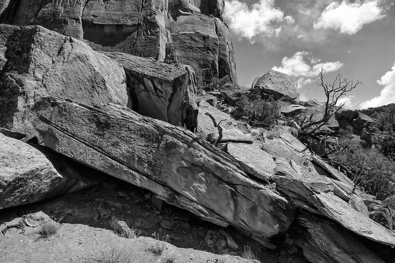Ute Canyon Rock Detail BW