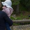 Besök på Borås djurpark juni 2014.