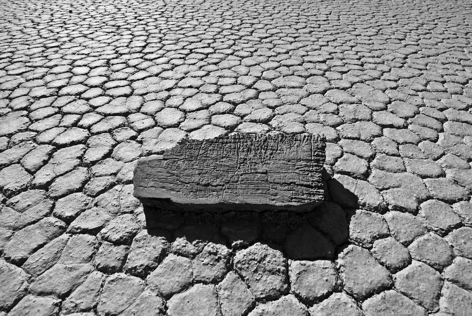 """<span id=""""title"""">Scratches</span> <em>Racetrack Playa</em> I found this flat rock incredibly compelling - I've never seen rocks with such intricate scratch-like patterns on them before. You can also get a good idea of what the mud flats were like in this photo."""