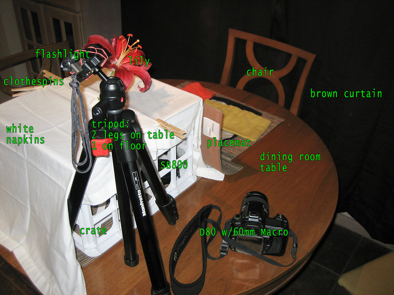 """<a href=""""http://www.jawsnap.net/Daily/year3/11272102_ACXDJ#832344816_bd9Yh"""">2010-04-09 Dancing Lily</a> SETUP 1 To create a homemade soft box, I stuck my flash inside a crate covered in white napkins (the thinnest white material I had handy). I attached a flashlight to the tripod using a rubber band to shine light on the pistils/stamen. Because this light was much warmer than the flash, I had to put a warming gel on it so both light sources would match. The placemat against the crate was necessary so the light from the flash didn't illuminate the curtain, which otherwise was dark enough to completely blacken out the background. To see inside the crate, see the <a href=""""http://www.jawsnap.net/Utility/Setups/8246339_SpVpq#832352929_hakpn"""">2nd setup photo</a>."""