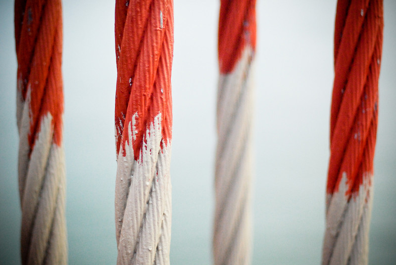 Painted Cables