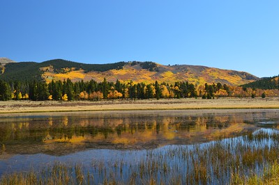Fall reflections at Kenosha Pass, Colorado