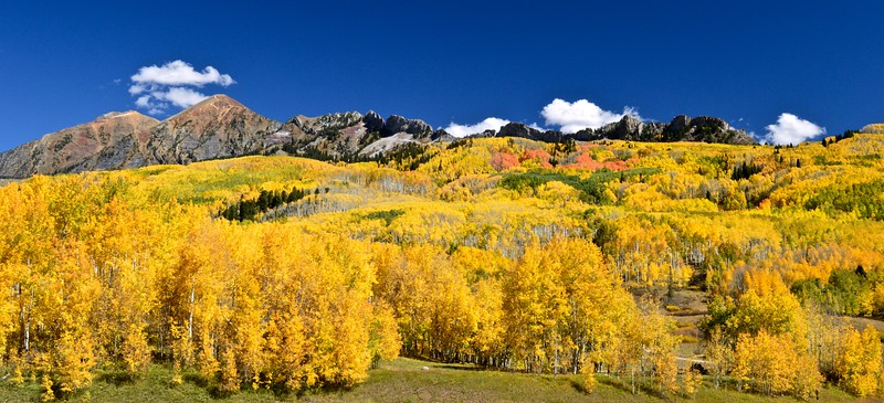 Multi-colored aspen cascade down from Ruby Peak and The Dyke near Kebler Pass, Colorado