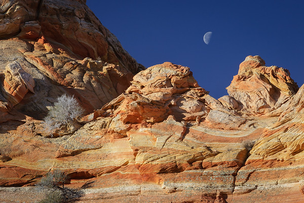 South Coyote Buttes  Arizona