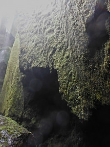 Við Gljúfrabúa við Hamragarða.