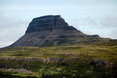 Hestur við Hestfjörð.