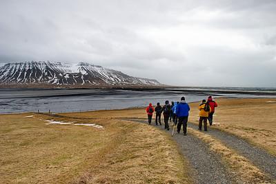 Skundi heldur niður á Súlueyri við Grunnafjörð