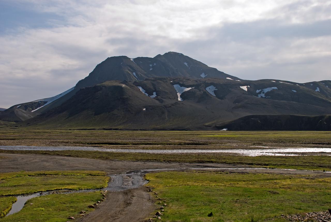 Strútur - Meyjarstrútur