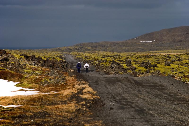 Leitað að rútunni