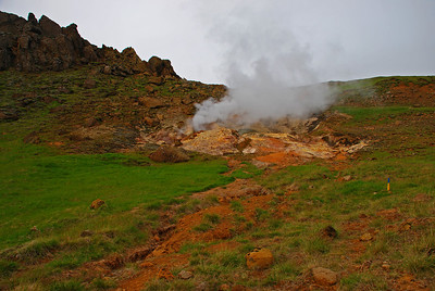 Í Dalsarði