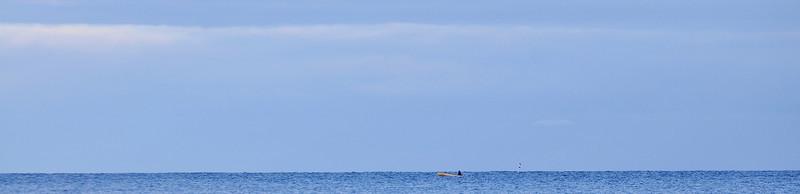 Mannen och havet