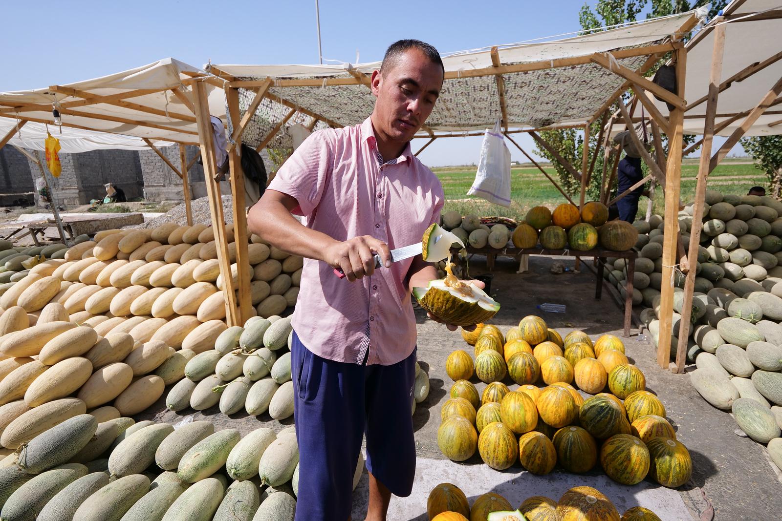 melons in Uzbekistan