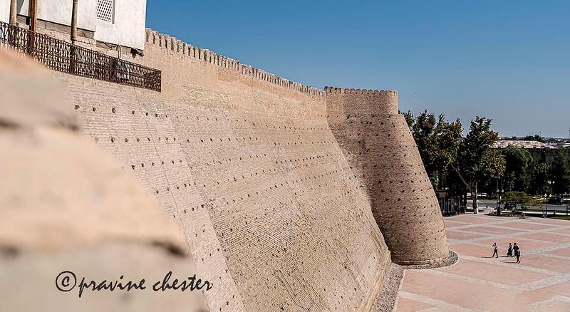 Mud-brick wall of the Ark