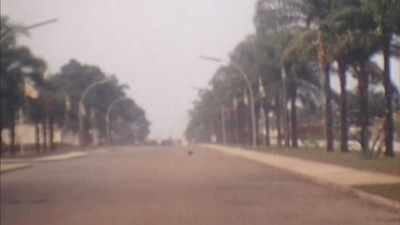 Avenida Bexiga