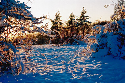 Čtvrrtek, 1. prosince 2005. Kamenný vrch, Brno.