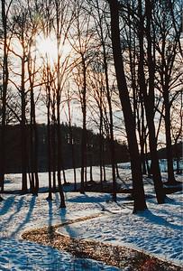 Odpoledne 20. ledna 2002 v oboře Bystrc
