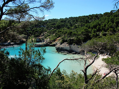 Minorca - Mainly Beauty, with a touch of the Beast