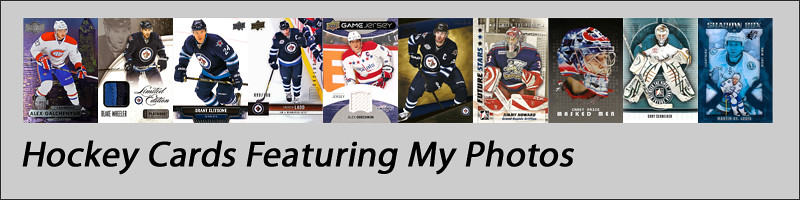 Portfolio Link Hockey Cards Grey