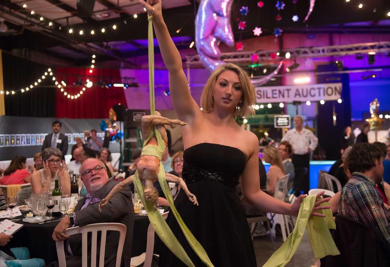 Vashon Allied Arts Art Auction 2014 Big Bang