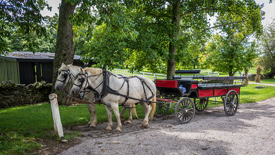 Wagon ride @ Shaker Village in KY