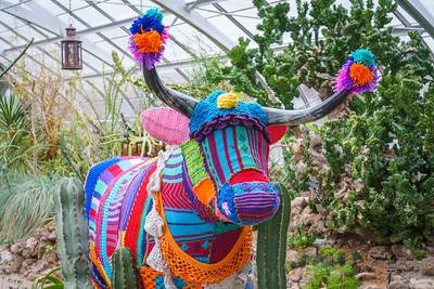 Crochet cow?
